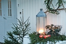Christmas / by Dawn Landis