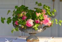 Bouquets & Fleurs fraiches