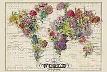 flower the world / Flowers bring joy! Spread flowers all over the world.