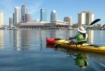 Fun things to do in Tampa Bay area / by Judy Kincaid