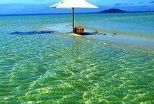 vacation dreams / by deb brown