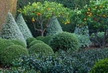 Gardens designers