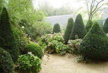Les jardins AGAPANTHE / Alexandre Thomas - Paysagiste Grigneuseville, Normandie