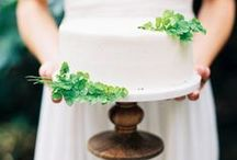 [ cakes + confections ] / by Lindsey Brunk