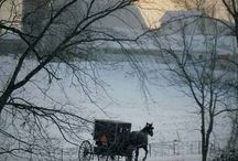 All About the Amish / Respect and Admiration for the simple, Christ-centered lives the Amish people live. / by Kathy Jackson