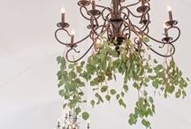 FLORAL CHANDELIERS / Lighting is an important part of your wedding. Make sure you don't leave this out! This can truly be the deal breaker for great wedding photos.