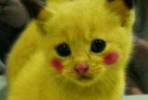 Pikachu / Pikachu and his friends