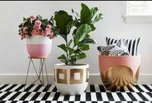 { crafty } / All things DIY.  For more DIY inspiration, check out Posh Purpose!  http://poshpurpose.blogspot.com
