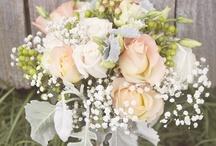 FUTURE WEDDING / by Sarah Rose