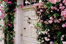 { secret garden } / I need flowers everywhere!  And, perhaps a few gnomes to tend them.  These ideas will add value and curb appeal to any home!  For more flowery goodness and home inspiration, check out Posh Purpose!  http://poshpurpose.blogspot.com
