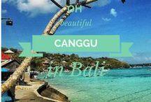 Bali / Balo - Canggu and Ubud // #bali #canggu #ubud / by Lilies Diary