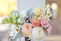 Flowers / by Meghan Mackintosh