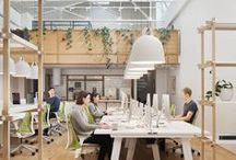 Open Concept Office Design / coworking, shared desks, large office tables