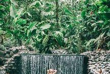 TRAUMZIELE FÜR DEN URLAUB & REISEINSPIRATION / Die Welt ist so groß! Wir zeigen euch die Reiseziele, die ihr auf keinen Fall verpassen dürft. Die ultimative Lilies Diary Bucket List für Weltentdecker. Fernweh, Travel, Travelblogger, Reisen. Reiseziele wie die Malediven, Australien, Neuseeland, Namibia, Südafrika, Bahamas, Antarktis, Peru, Nordsee und die Ostsee und und und gehören auf jede Bucket List.