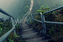 Stairways to Heaven / by Donna Levi