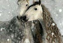 Horses / by Julianne Sotomayor-Tassi