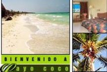 Cayo Coco Cuba / All about Cayo Coco Cuba – Links to important websites focused and dedicated on Cayo Coco, Things to do in Cayo Coco, Best Hotels in Cayo Coco and Private Restaurants in Cayo Coco Cuba / by Cuba Travel