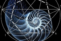 Phi, Fractals, Fibonacci & the Grand Design / As above, so below. The similarities of patterns, macro to micro, astounds. More pins are on my other boards; FIBONACCI Spirals, PHI (Branching fractals), Orb/Circle/Tao/Eye and FRACTALS. / by Granny Grue