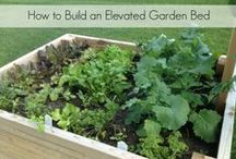 Summer - Gardening / Ways to make your garden more productive. DIY ideas, tips on planting and harvesting. / by Wisconsin Mommy