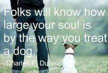 INSPIRE | Dog Quotes