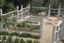 Garden Settings and Structure / by savvycityfarmer