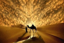 Deserts of the World / by Marianne Curley