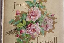 Roses roses roses  / by Antonietta Tartaruga Lenta