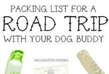 Pet Tips & Tricks