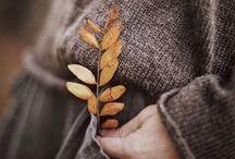 INSPIRATION   Autumn