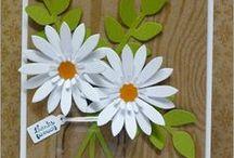 Flower Cards & Ideas