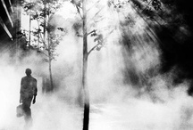 "Trent Parke Collection / One of the photographers I admire - his album ""Dream/Life"" was a huge inspiration to me."