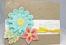 Flower Patch Set & Framelits