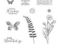 Butterfly Basics Stamp Set ideas