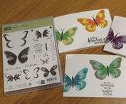 Watercolor Wings stamp & framelit ideas