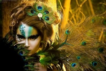 Peacock costume / by Lori Jensen
