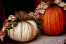 autumn. / by Marisa Dahlstrom