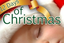 12 Days of Christmas Giveaway / 12 Days of Christmas Giveaway from The Baby Sleep Site with a grand prize of a the winner's choice of a $250 Gift Card to Amazon or Target. See the blog for full details.