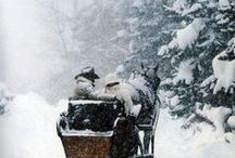 Winter Wonderland / winter wonderland, winter scenes, snowy scenes, sleigh rides, winter cottages, snowy paths, winter walks, christmas scenes, holiday scenes