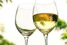 All about Wine~ / by Jennifer Kapus