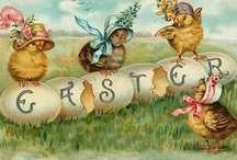 Easter  / Here comes Peter Cottontail hopping down the bunny trail hippety hoppity Easters on it's way!