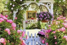 flowers and fences / I love white picket fences and roses!