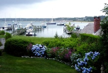 Martha's Vineyard / Time to go back for a visit!