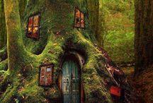 Homes / by Rachel Grennan