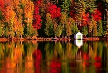 Fall Favorite things / by Edna Campbell