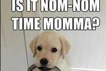noms / by Taylor Posey