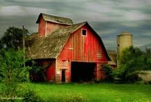 Barns / by Heather Stevens
