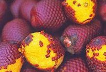 Frutas - Fruits