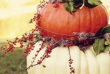 Thanksgiving - Fall Crafts/Decor / by Kelly Worthington-Hardy