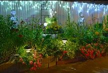 Garden lighting / Lighting can add to the enjoyment of your garden in the evening.