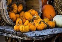 Fall into... Autumn